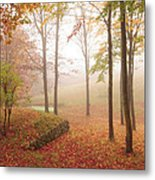 Autumn Fog Metal Print