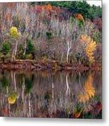 Autumn Foliage River Reflection Metal Print