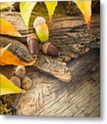Autumn Forest Background Metal Print