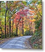 Autumn Forest Trail Metal Print by Bob Jackson