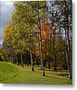 Autumn Forests And Fields Metal Print