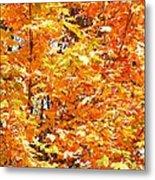 Autumn Fury Metal Print