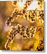 Autumn Goldenrod - Paint  Metal Print