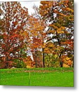 Autumn Golf Metal Print