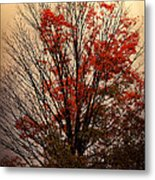 Autumn Goodbyes Metal Print