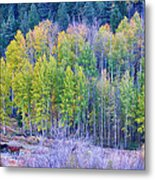 Autumn Grazing Horses Bonanza Metal Print by James BO  Insogna