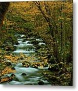 Autumn Greenbriar Cascade Metal Print