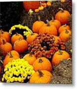 Autumn Harvest 6 Metal Print