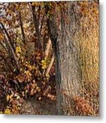 Autumn Hideaway Metal Print