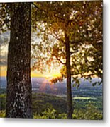 Autumn Highlights Metal Print by Debra and Dave Vanderlaan