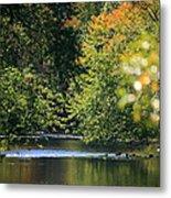 Autumn Highlights On The Quinnebaug River Metal Print