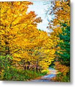 Autumn Hike - Paint Metal Print