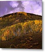 Autumn Hillside Metal Print