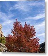 Autumn In Glenwood Canyon - Colorado Metal Print