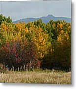 Autumn In Idaho Metal Print