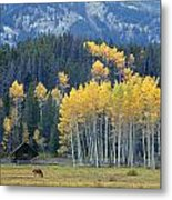 1m9359-autumn In Jackson Hole Ranch Country Metal Print