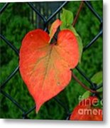 Autumn In July Metal Print