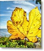 Autumn In Lyme Regis Metal Print