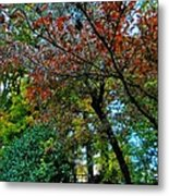 Autumn In Raleigh 009 Metal Print