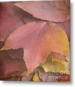 Autumn In Textures Metal Print