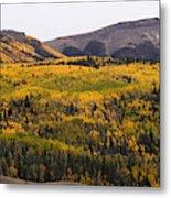 Autumn In The Colorado Mountains Metal Print