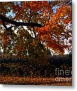 Autumn In The Country Metal Print by Inspired Nature Photography Fine Art Photography