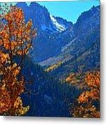 Autumn In The Sierras Metal Print