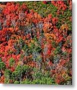 Autumn In The Wasatch Range Metal Print