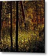 Autumn In Vail - Colorado Metal Print