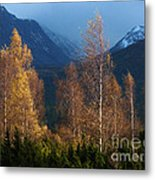 Autumn Into Winter - Cairngorm Mountains Metal Print