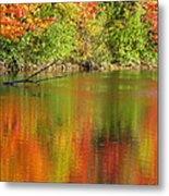Autumn Iridescence Metal Print