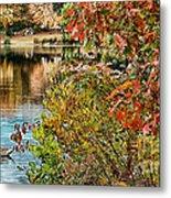 Autumn Lake And Swan Metal Print