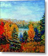 Autumn Landscape Quebec Red Maples And Blue Spruce Trees Metal Print