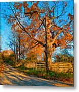 Autumn Lane Mpasto Metal Print