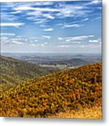 Autumn Layers Metal Print