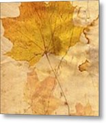 Autumn Leaf In Grunge Style Metal Print