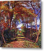Autumn Leaf Road Metal Print