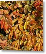 Autumn Leaves 83 Metal Print