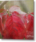 Autumn Leaves Blank Greeting Card Metal Print