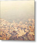 Autumn Leaves Floating In The Fog Metal Print