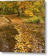 Autumn Leaves In Burn Vertical Metal Print
