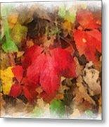 Autumn Leaves Photo Art 04 Metal Print