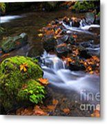 Autumn Leaves Scattered Metal Print