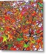 Autumn Leaves Through Filtered Sunlight II Metal Print