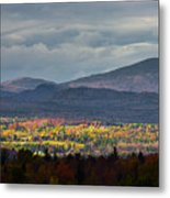 Painting With Autumn Light Metal Print