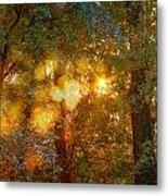 Autumn Light Symphony Metal Print