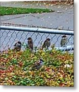 Autumn Lineup Metal Print