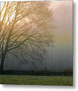 Autumn Maple At Dawn Metal Print