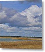 Autumn Marsh At Shell Island Metal Print