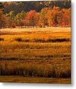 Autumn Marsh Metal Print